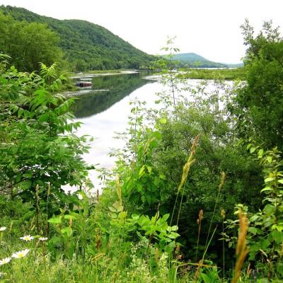 La Baie de Fitch