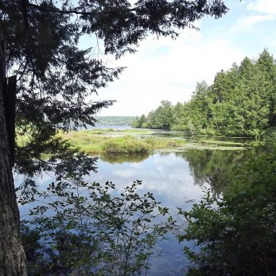 Marais  à Katevale