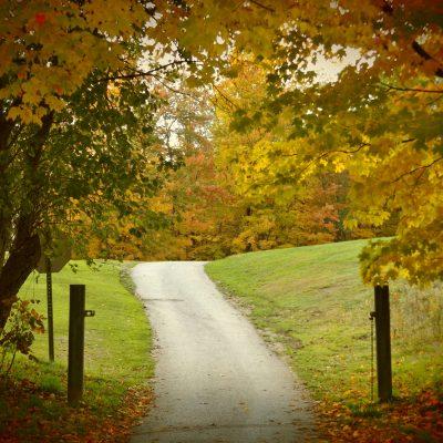 Chemin du Parc Orfrod